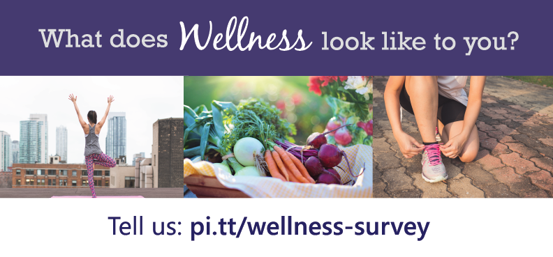 wellness survey banner